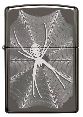 Spider & Web Design